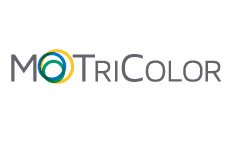 MoTriColor: Molecularly guided trials with specific treatment strategies in patients with advanced newly molecular defined subtypes of colorectal cancer