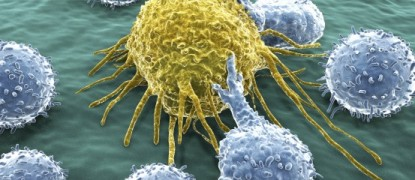 The Epidemiology of Immune Responses in Colorectal Cancer